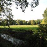 Afb. 13. Het park van Huys ten Donck - een oase van groen in een verstedelijkt landschap.
