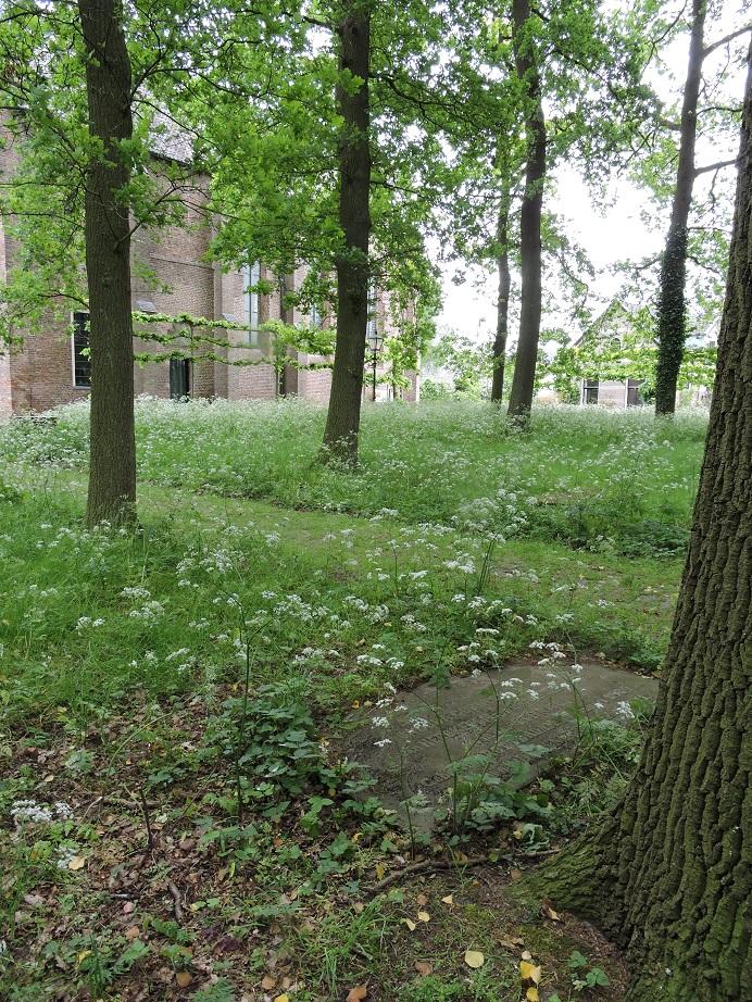 Afb. 3. Op de achtergrond het oude kerkje van Diepenveen met op de voorgrond het Van Heeckeren graf.