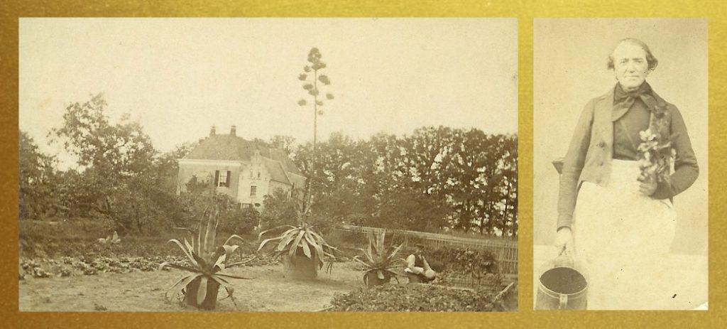 Afb. 1. De bloeiende Agave americana op Den Bramel en tuinbaas Jäncke, foto part. coll.