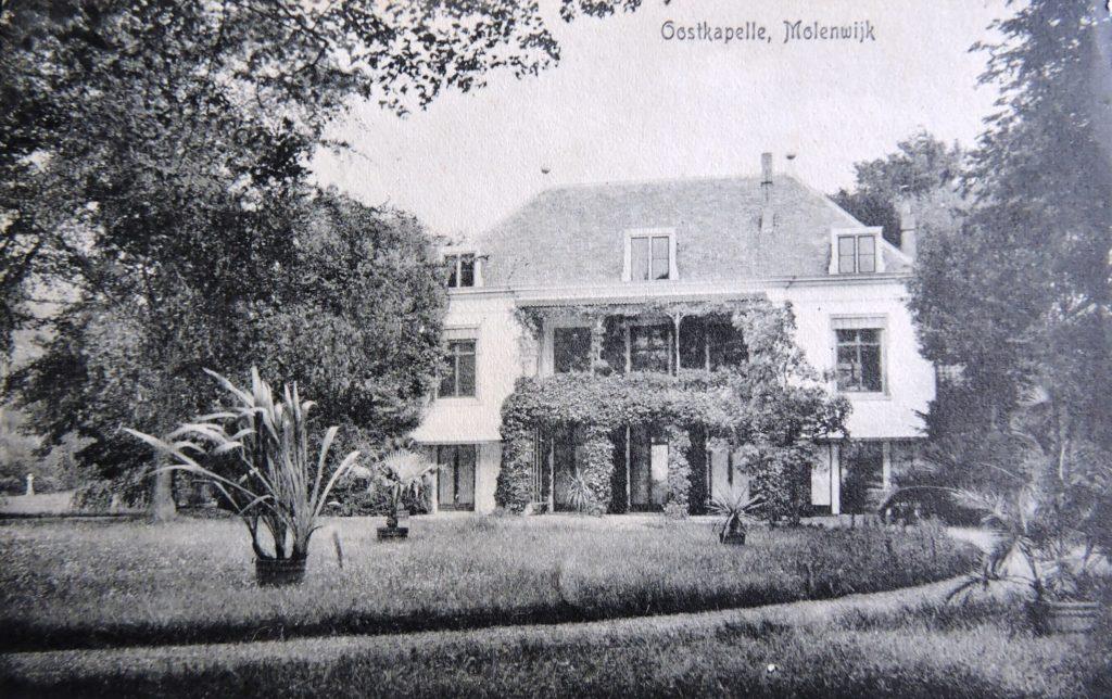 Afb. 1. Een weelderig begroeid Molenwijk in de zomer van 1912 met grote kuipplanten op het gazon. Ansichtkaart part. coll.
